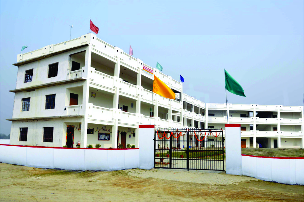 New Standard College of